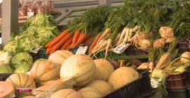 Domáce ovocie od trhovníčky